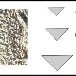 Studs – triangle 2 Reticulated
